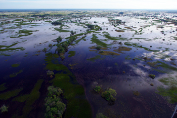 Pantanal, le plus grand marecage du monde